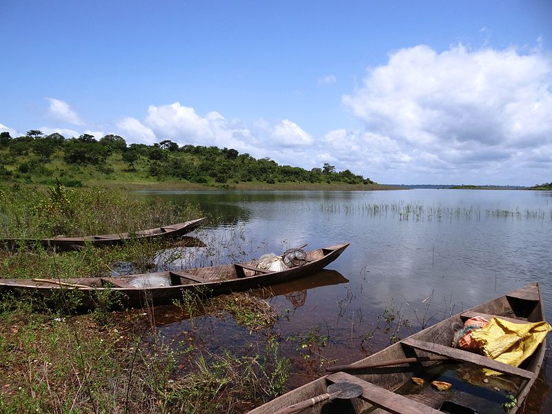 Fishers_boats_on_Lake_Kossou_near_Kousso_in_Côte_dIvoire_1