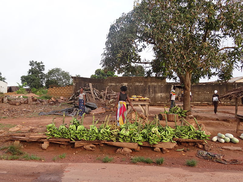 Selling_Bananas_by_the_road_in_Côte_dIvoire_4